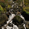 Below Greenleaf Falls.