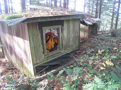 The old Hamilton Cabin© Chiyoko Meacham
