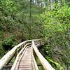 Bridge below Rhodney Falls <FONT SIZE=1>© Chiyoko Meacham</FONT>
