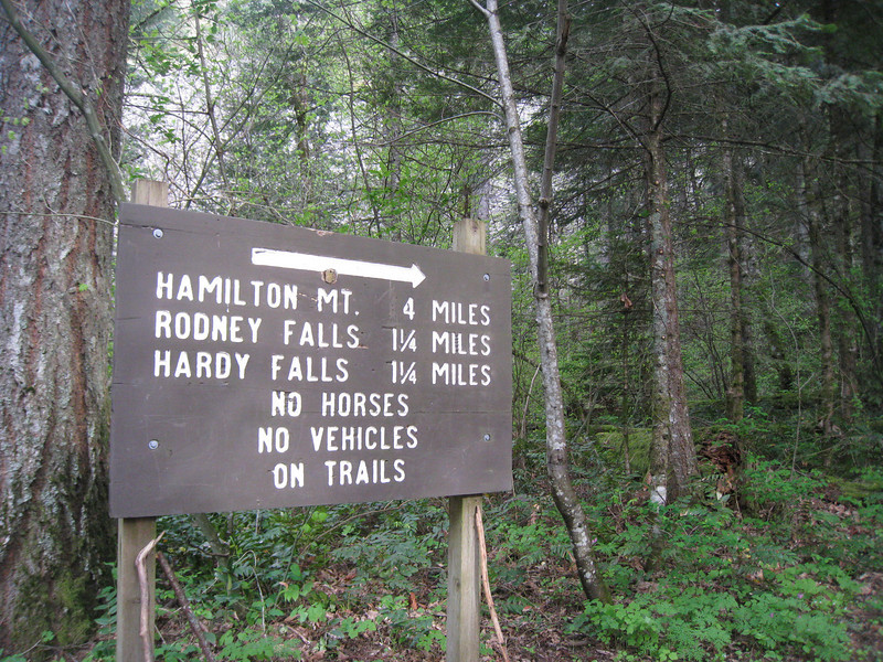 Heading out from the Hamilton Mountain Trailhead. <FONT SIZE=1>© Chiyoko Meacham</FONT>