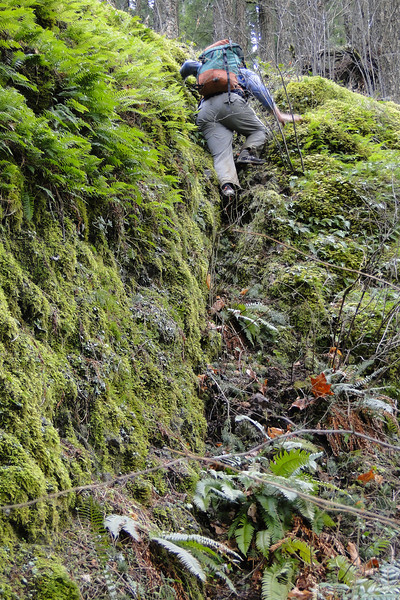 Horsetail Ridge - The tricky bit!