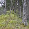 Horsetail Ridge.