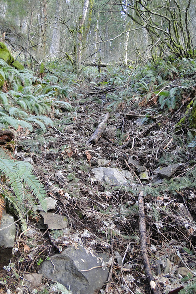 RJT -> ROA<br /> Then we found a seasonal drainage line that was free of debris & easy to climb up.