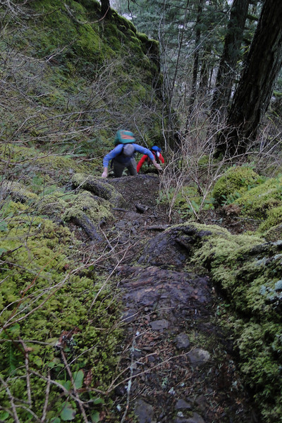 The first part of the RJT is the steepest.