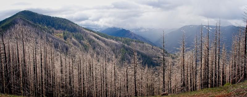 Indian Point - Deadwood Loop - Peak 3152