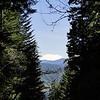 There are few views on the Gorton Creek Trail until you reach the Ridge Cutoff trail junction but if you look towards the Columbia as you cross the unnamed dry creek bed with the large fir fallen across it you will get your first views of Mt. St. Helens.