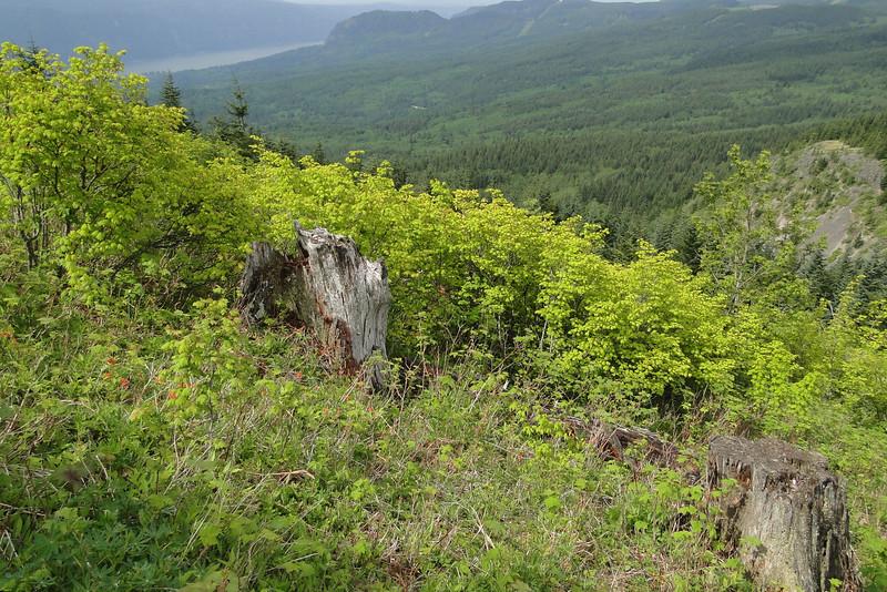 Phlox Point - West side climb.
