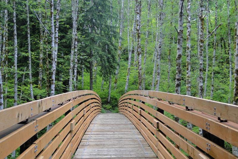 The Hardy Creek Mega Bridge!