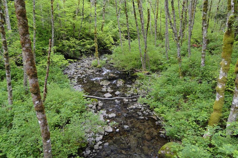 Hardy Creek.