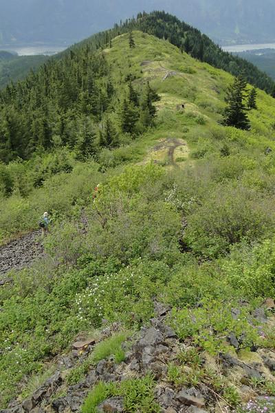 Hardy Ridge Looking South.