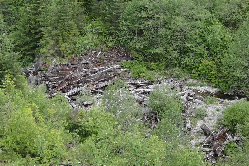 The giant log jam above the Falls.