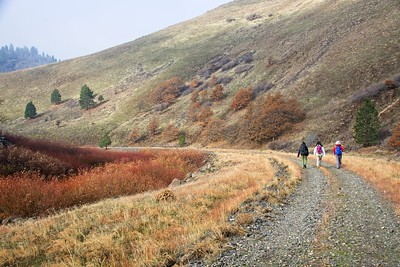Klickitat Trail from Harms Rd.