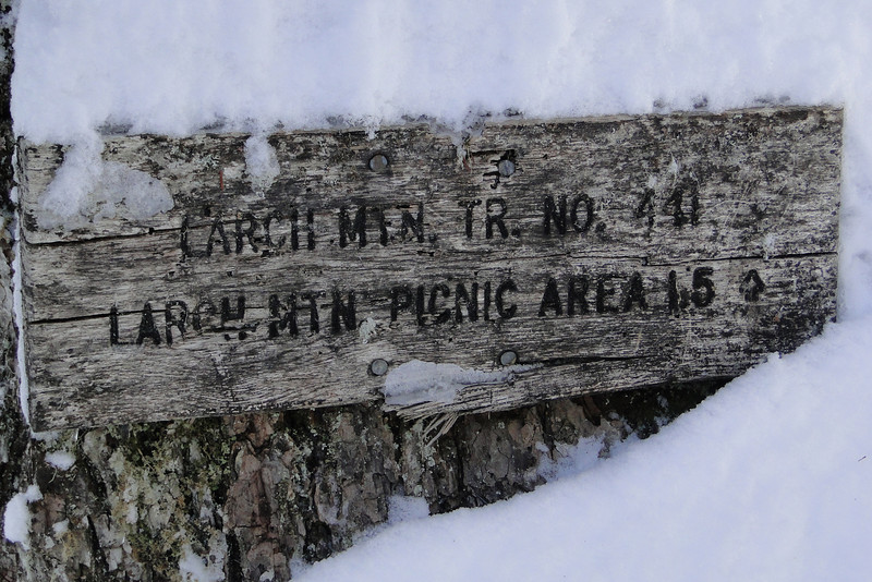 FS 315 - Larch Mountain Trail Junction