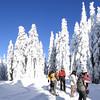 Larch Mountain Summit.