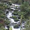 Multnomah Creek <FONT SIZE=1>© Chiyoko Meacham</FONT>