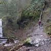 Wisendanger Falls