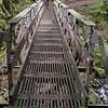 Multnomah Creek - 1st. Bridge