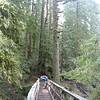 Multnomah Creek - 1st. Bridge <FONT SIZE=1>© Chiyoko Meacham</FONT>