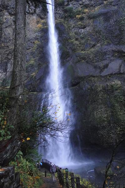 Back at Multnomah Falls.