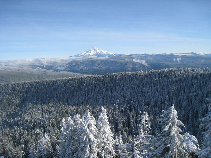 View from Sherrard Point <FONT SIZE=1>© Chiyoko Meacham</FONT>