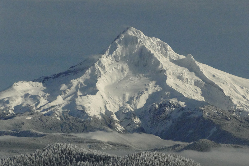 Mt. Hood from Sherrard Point