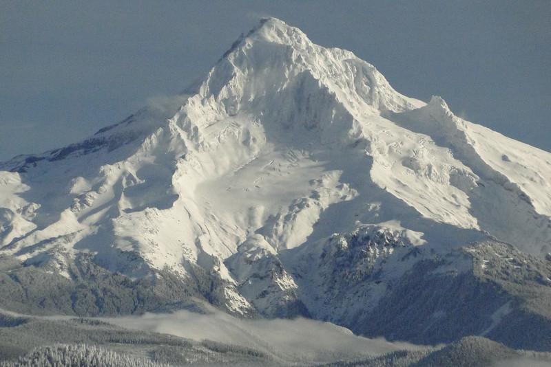 Mt. Hood from Sherrard Point