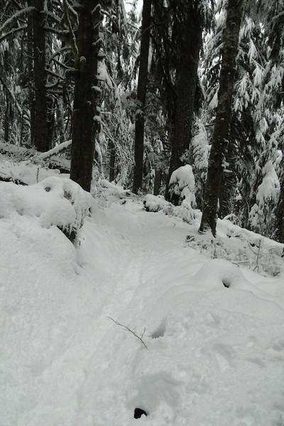 Snow getting deeper!
