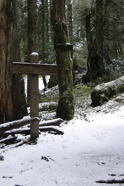 Franklin Ridge Trail Junction.