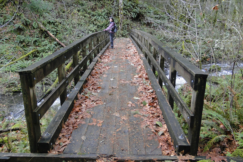 PCT Bridge over Greenleaf Creek.