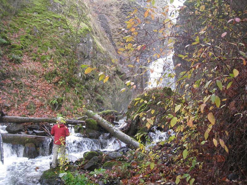 Base of Lower Greenleaf Falls. <FONT SIZE=1>© Chiyoko Meacham</FONT>