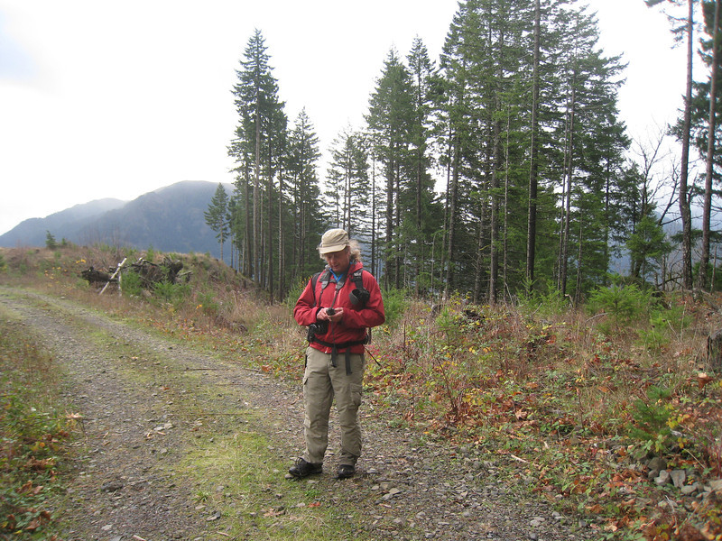 We climbed out from the canyon onto this Logging road near the PCT. <FONT SIZE=1>© Chiyoko Meacham</FONT>