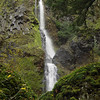 """Starvation Creek Falls. This is the view from the <I>""""on trail""""</I> viewing area. A little bit of scrambling and a wet foot or two will get you past this huge boulder to the pluge pool and some lovely off tail views!"""