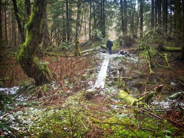Basin Wanderings