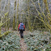Multnomah Basin<br /> The Christmas Trail.