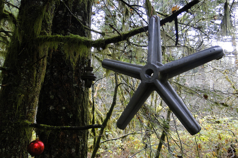 Multnomah Basin<br /> The Christmas Trail.