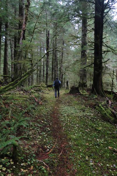 Multnomah Basin Trail.