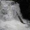 Middle Dutchman Falls <FONT SIZE=1>© Chiyoko Meacham</FONT>