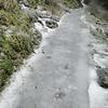 Multnomah Falls Trail.