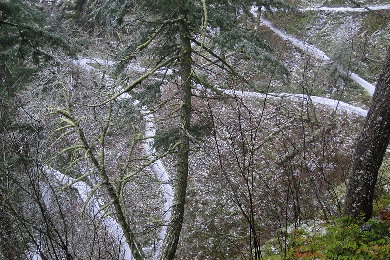 Looking down on the Wahkeena Trail.