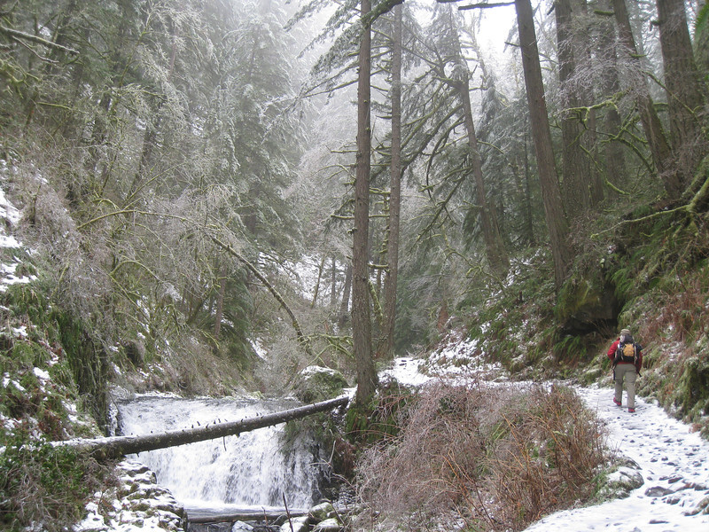 <FONT SIZE=1>© Chiyoko Meacham</FONT> Multnomah Creek.