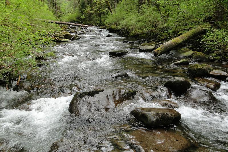 Tanner Creek.