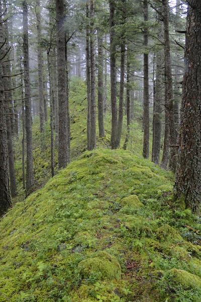 Munra Ridge
