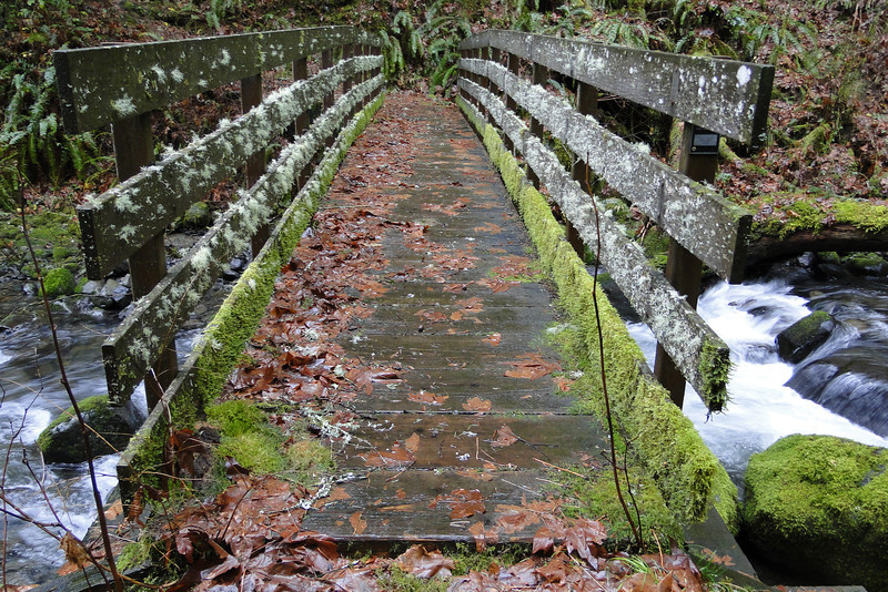 Moffet Creek Bridge.