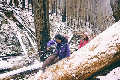 Nesika Lodge Hike © Chiyoko Meacham