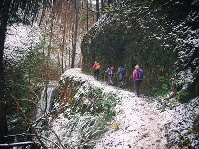 Nesika Lodge Hike