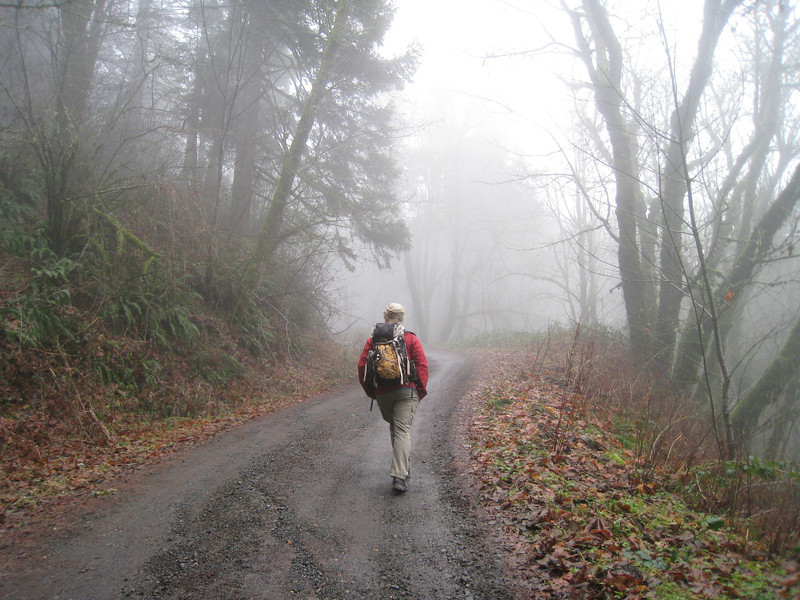 Heading up Palmer Mill Road from the Angels Rest TH. <FONT SIZE=1>© Chiyoko Meacham</FONT>