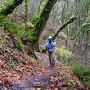 Trail 400 from Multnomah Falls