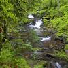 Duncan Creek