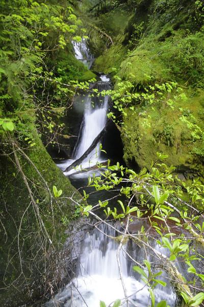 Quad Falls