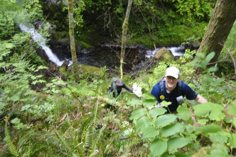 Brad climbing back up from the creek below Lower Woodward Falls.